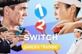 NintendoSwitch_1-2-Switch_artwork_illustration_04