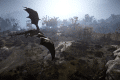 Black-Desert-Dragon-Screenshot